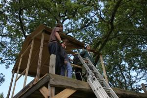 Unser Baumhaus nimmt Gestalt an